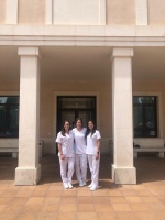 intercambio, prácticas, internacional, terapia ocupacional
