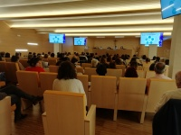 Jornada, Discapacidad Intelectual, Día Internacional, transculturalidad